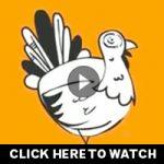 lawmatters-images_turkey