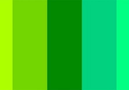 Picture of different shades of green