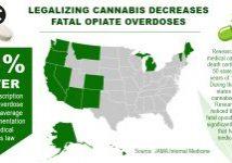 Opiate overodose