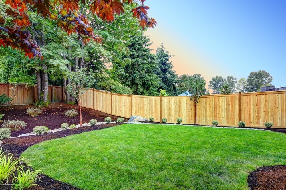 backyard with fence with green grass, green and red leaved on trees, and bushes surrounded by mulch